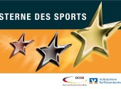 SternedesSports_Logo